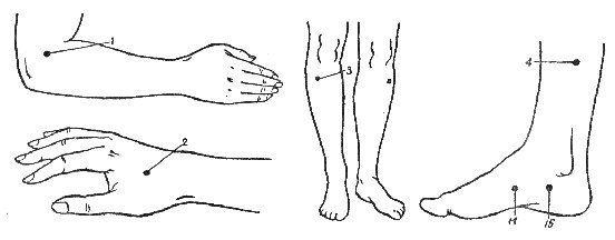 Точки тела для лечения атеросклероза