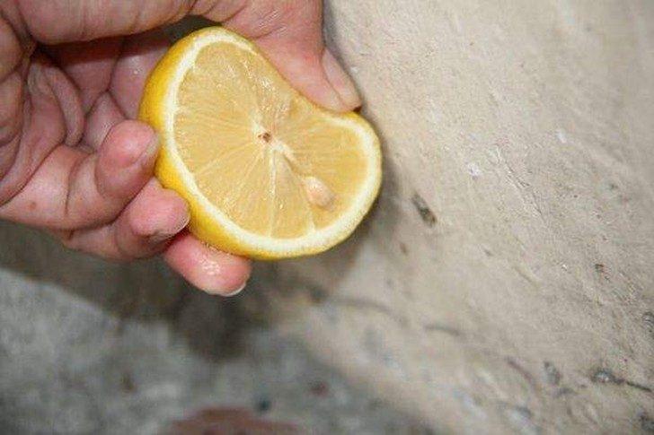 Лимон на все случаи жизни
