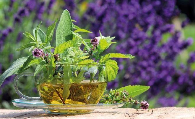 5 природных средств, помогающих избавиться от неприятного запаха изо рта