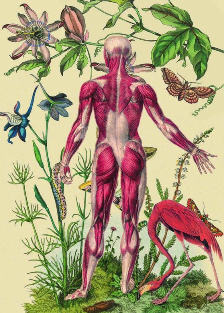 Какие болезни проявляются на коже