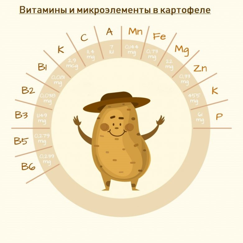 Кому нельзя ежедневно употреблять картофель