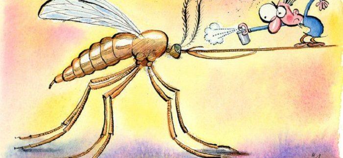 Бюджетное средство, которое поможет после комариного укуса