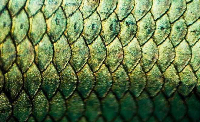11 интересных фактов о туши для ресниц