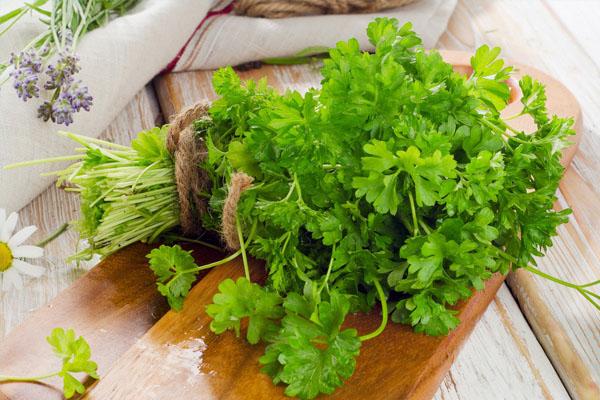 Лечебные свойства зелени