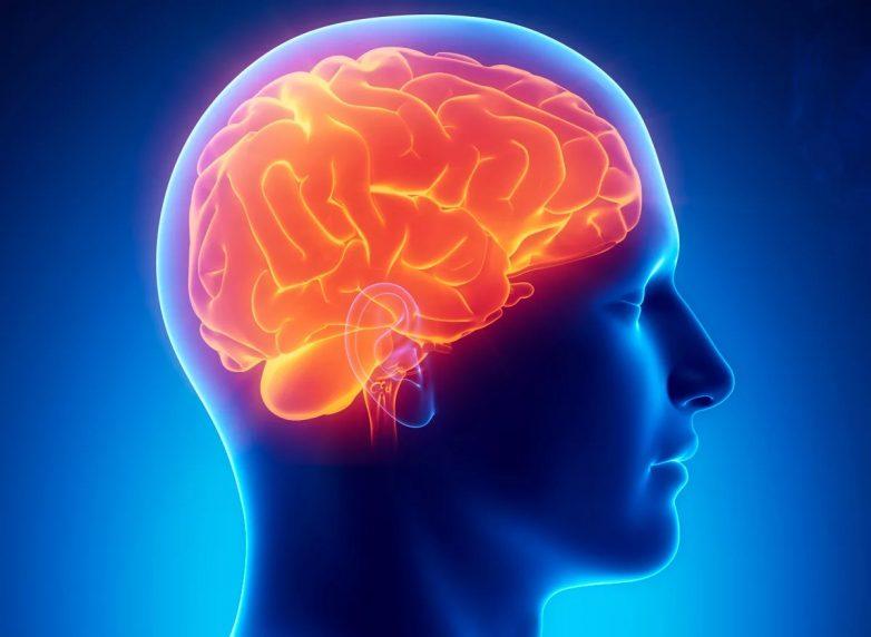 Причины сужения сосудов головного мозга