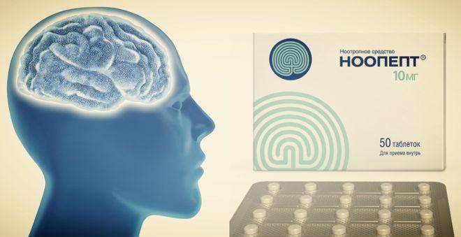 10 лучших добавок для работы мозга и укрепления памяти