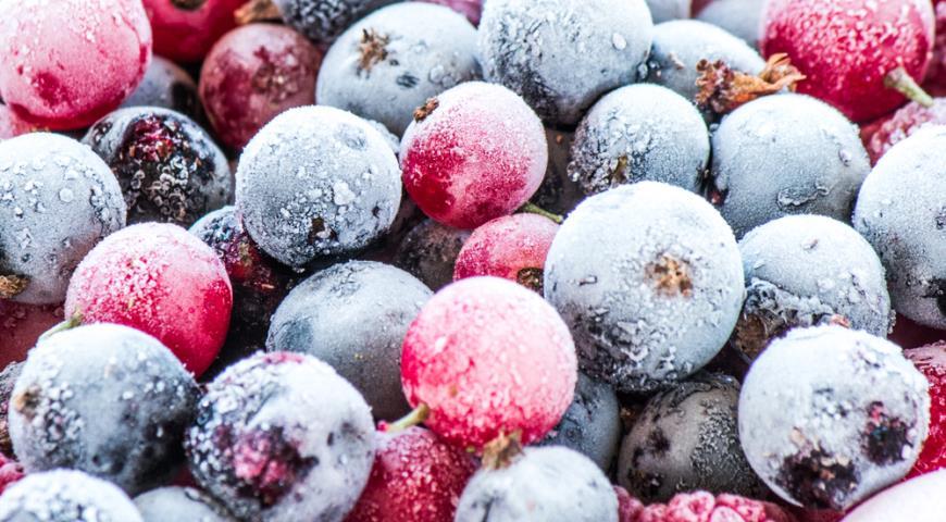 Все, что вам нужно для заморозки продуктов на зиму