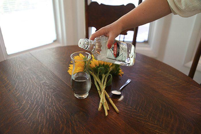 О пользе водки в быту
