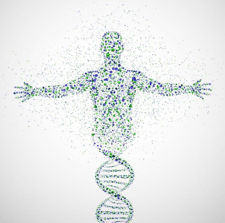 Полезные свойства мумиё для организма человека