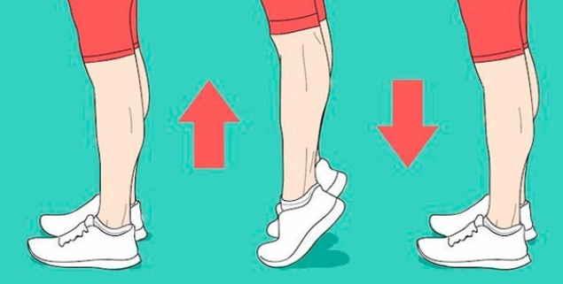 От закупорки вен и от тромбов — простое упражнение!