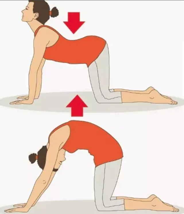 Ноет поясница? Три простых упражнения, чтобы ее «успокоить»