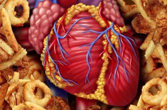 Я — кардиолог. Вот 9 вредных продуктов, которые я запрещаю есть своим близким!