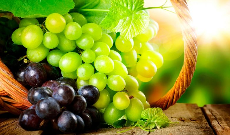 Полезные свойства винограда для красоты и здоровья
