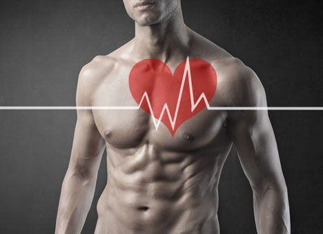 В чем разница между работой сердца у женщин и у мужчин