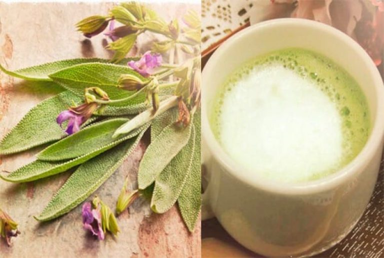 Молоко с луком от кашля — 3 рецепта, проверенных не одним поколением!