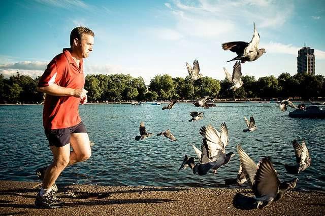 Как похудеть без спортзала