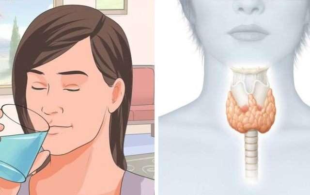 Как запустить по новой работу щитовидки, чтобы ускорить метаболизм и сжечь лишний жир