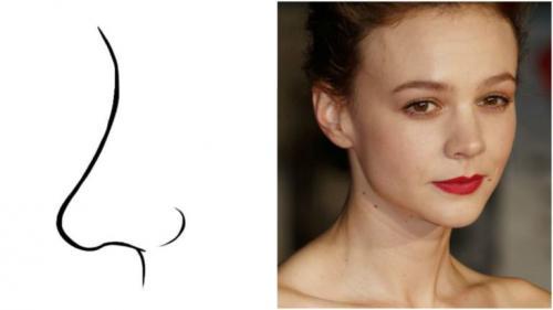 Характер по носу у женщин. Форма носа и характер человека