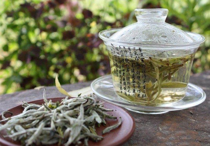 Волшебные свойства белого чая