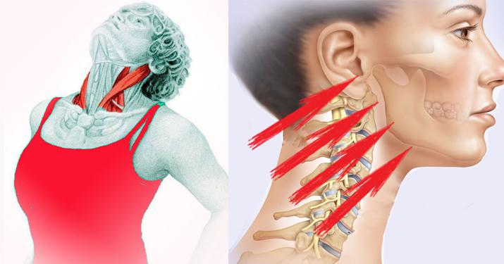 Упражнение «Бабочка»: укрепляем шею и подтягиваем подбородок