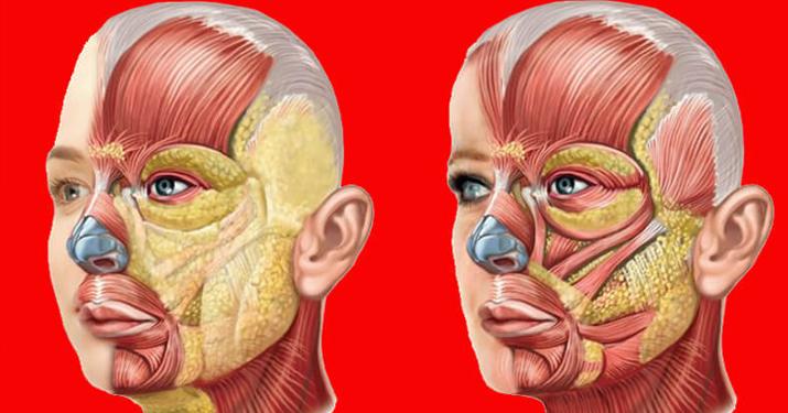 Омоложение зоны носогубных складок и щек: Упражнение «Полотно»