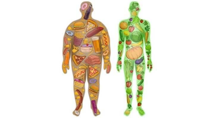 Пищевая токсичность: продукты, ворующие нашу энергию