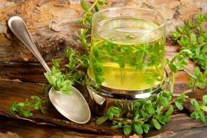 Лекарственные растения для очищения бронхов и легких