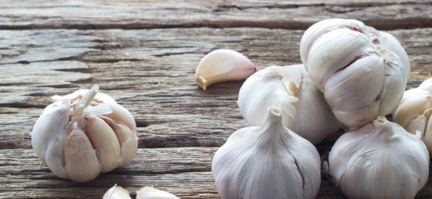 Как улучшить своё здоровье с помощью обыкновенного чеснока