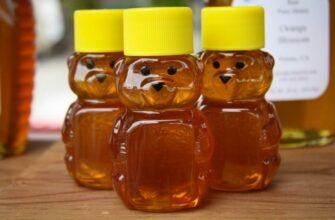 Кто придумал для мёда бутылочку в форме медведя и как зовут этого медового медвежонка