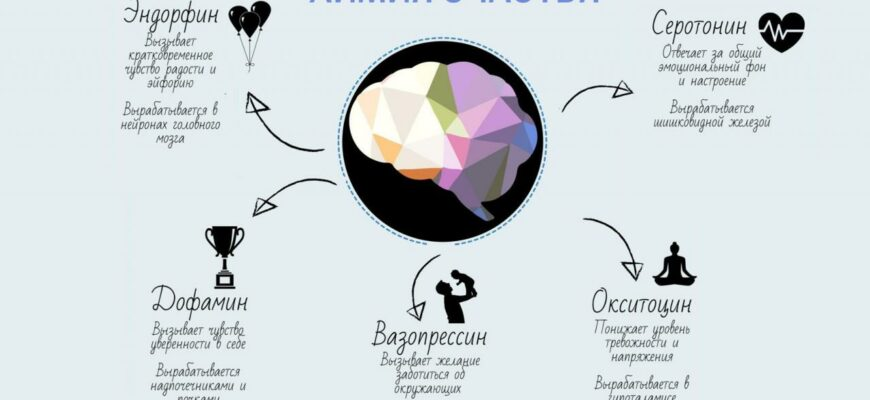 Как работают «гормоны счастья»