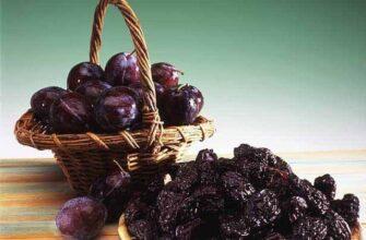 Польза чернослива для здоровья