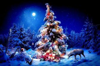 В первые 12 дней после Нового Года можно заложить фундамент успеха на весь год
